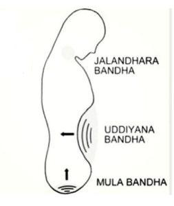 Beneficios de los Bandhas