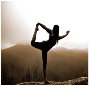 Etapas del Kripalu Yoga