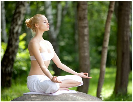 Historia de la Meditación Vipassana